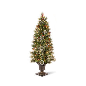 Christmas Trees Under 6 Feet