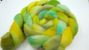 Gulf Coast Native Roving - 4oz/114g - Summer Fun