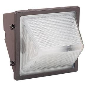 Seagull Lighting 86042B-10 Series Medium 100W HPS Clear Textured Wall Pack