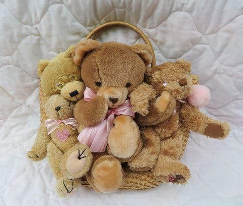 Friends Together Bag - Brown Bear Plushies