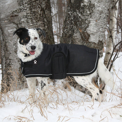 Shedrow K9 Tundra Dog Coat - Black - Two Hearts Equine Boutique