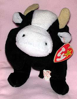 Daisy the Black & White Cow