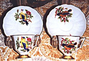 Hand Painted China Cup & Saucer