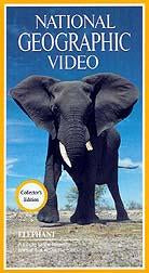 National Geographic Collector's Edition Video: Elephant