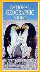 National Geographic Video: Antarctic Wildlife Adventure