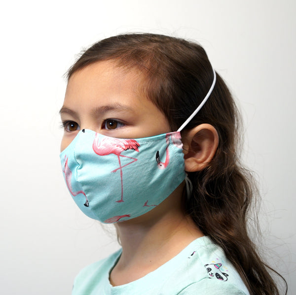 Reusable Face Mask (Kid)