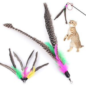 Replacement Head Long Feather Cat Toy Wine Whiskers