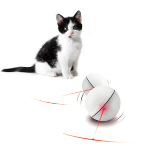 LED Light Magic Ball Teaser Cat Toys Wine Whiskers
