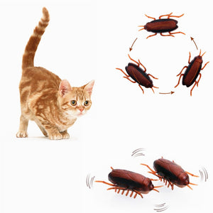 Electronic Cockroach Cat Toy Wine Whiskers