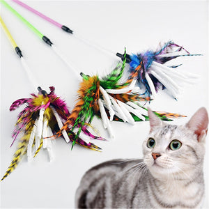 Lovely Feather Paper Spiral Stick Cat Toy Wine Whiskers