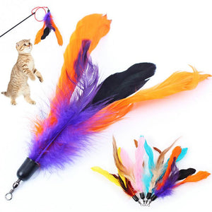 Refill Feather Wand Stick Cat Toy Wine Whiskers