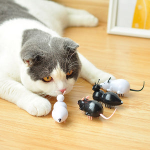 Battery Operated Ant/Mouse Cats Toy Wine Whiskers