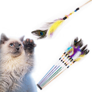 Peacock Feather Wand Cat Stick Toys Wine Whiskers