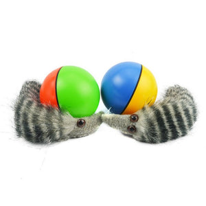 Weasel Motorized Funny Rolling Ball Cat Toy Wine Whiskers