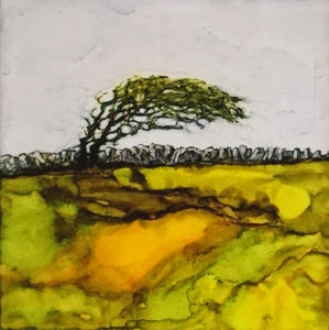 Original Irish Art |  Burren Tree Bows (SOLD)