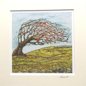 Irish Landscape Prints | Fairy Tree
