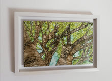 Load image into Gallery viewer, Original Irish Art | Daydream (34cm x 49cm) Framed