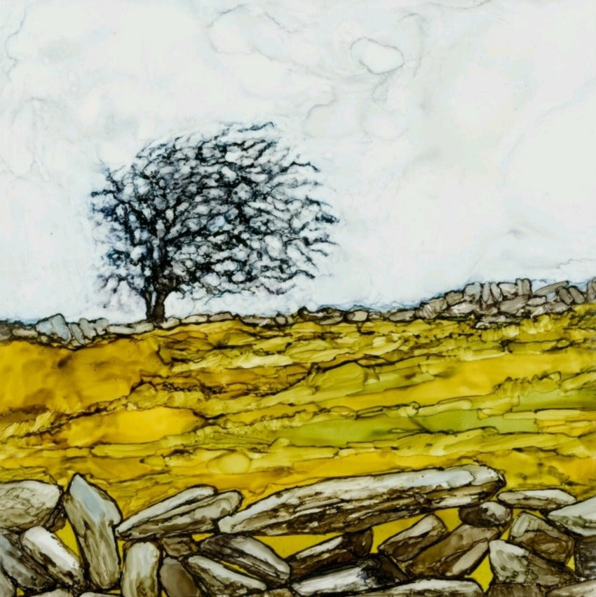 Greeting Card - Burren Tree