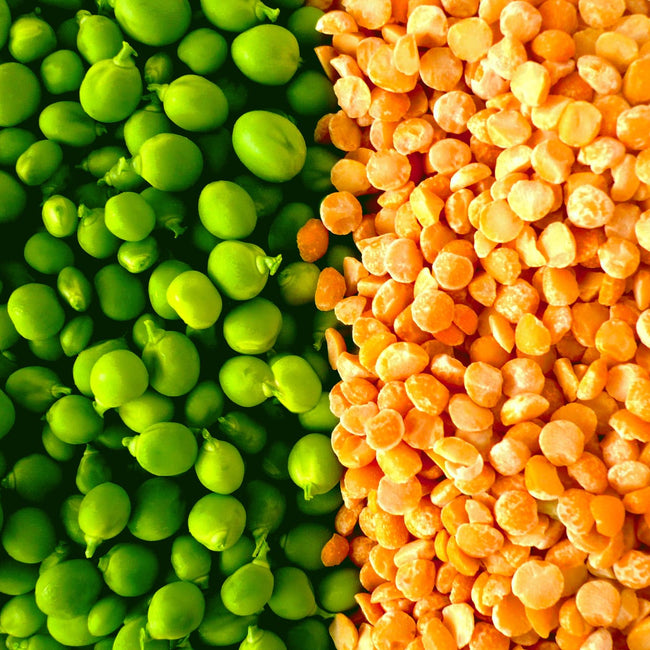 6 Unknown Pea Protein Benefits