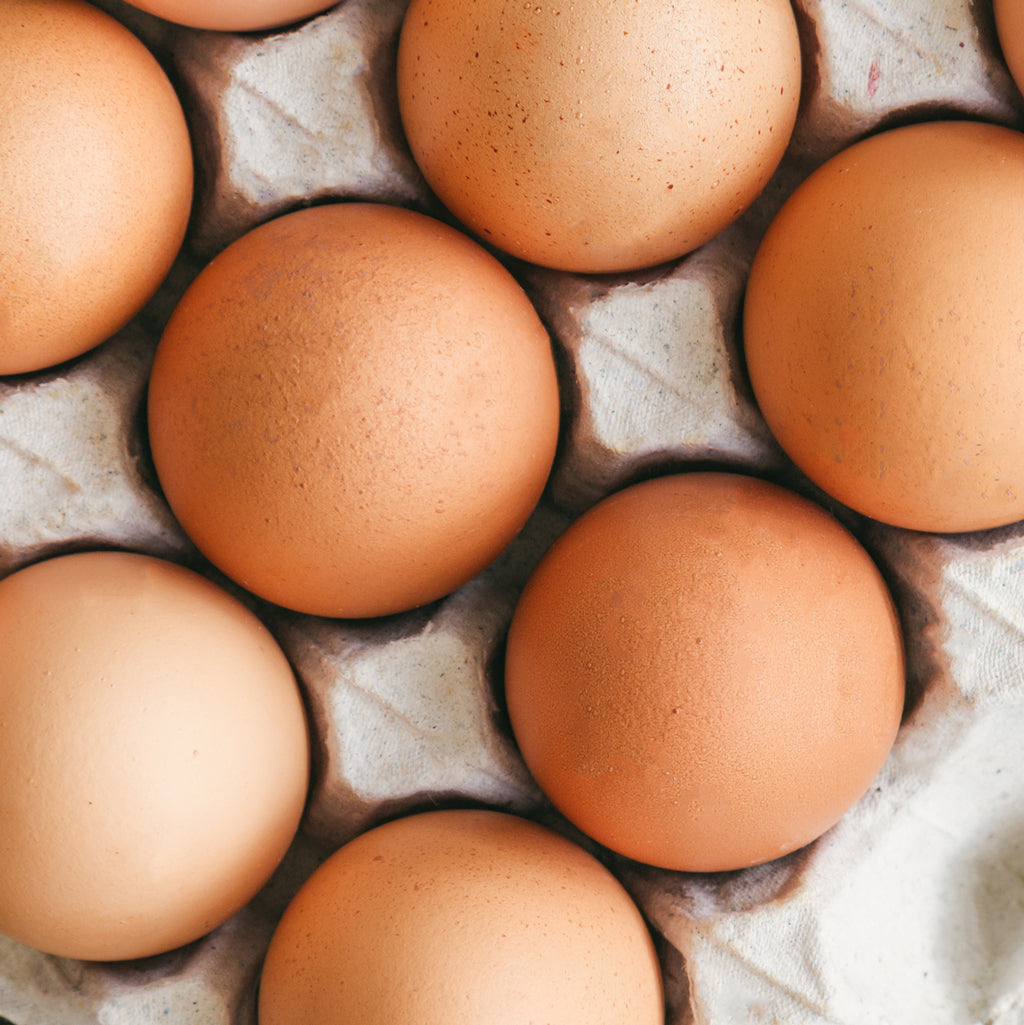 Pea Protein vs Egg Protein: Is Egg All It's Cracked Up to Be?