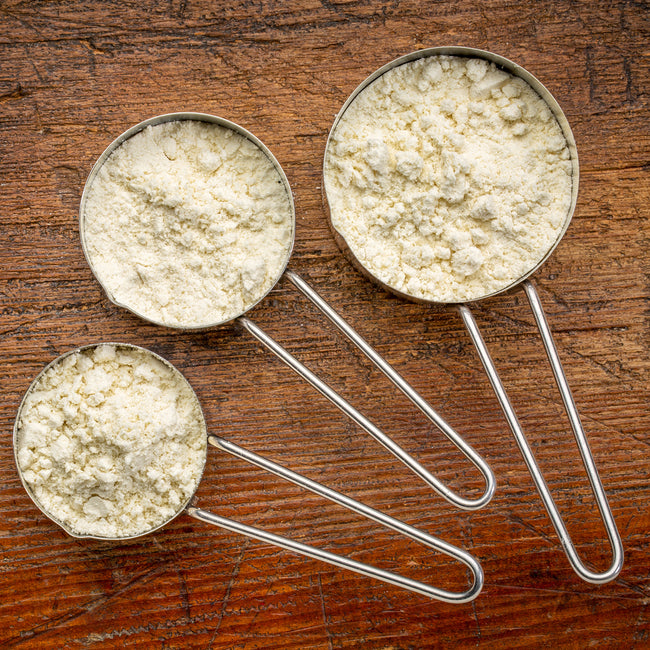 Whey vs Plant Protein: Which Protein Supplement Is Right for You?
