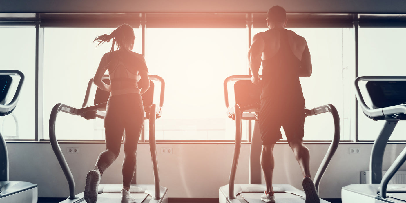 Ultimate Guide To Exercise and Protein