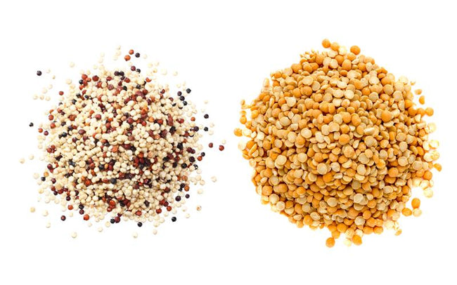 Pea Protein vs Quinoa Protein: Which Protein Is Most Beneficial For You?