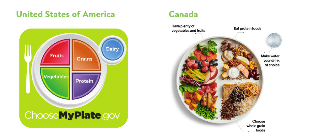 Nutrition Guidelines for the US and Canada