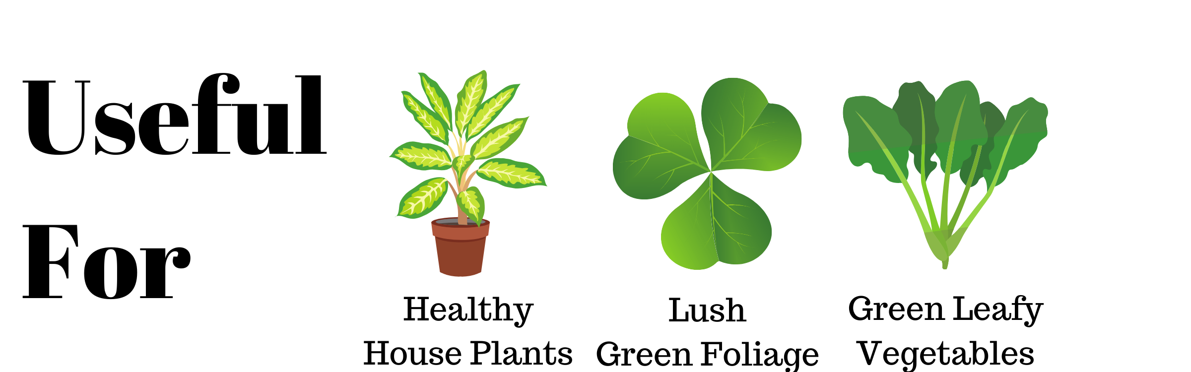 Plant food sticks is useful for green indoor plants
