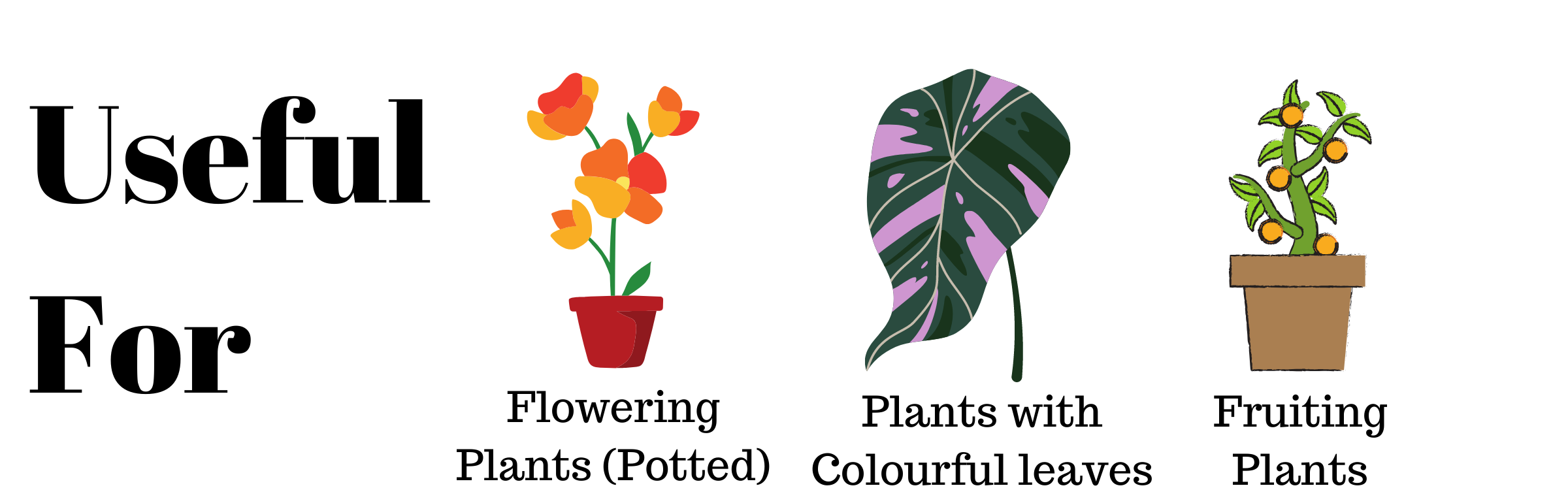 Plant food sticks by lazygardener is useful for all flowering plants in pots