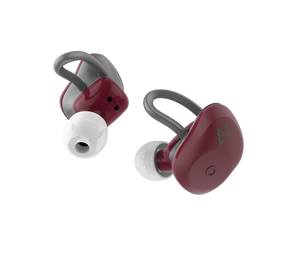 TE-D01a True Wireles Earphone