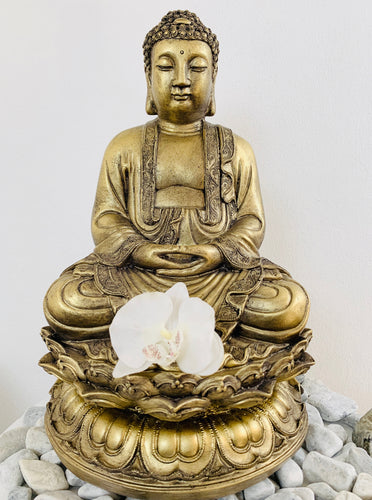 50cm Indian Buddha