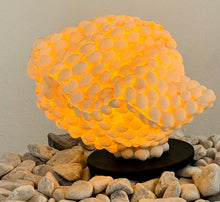 Load image into Gallery viewer, SEASHELL SHAPED LAMPSHADE