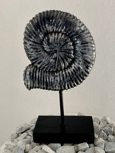 SEASHELL ON A STAND DECOR 40CM