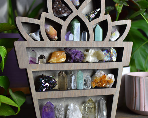 Grey Succulent Shaped Crystal Shelf