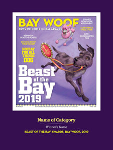 """Beast of the Bay"" Cover Award Banner by NewsKeepsake"