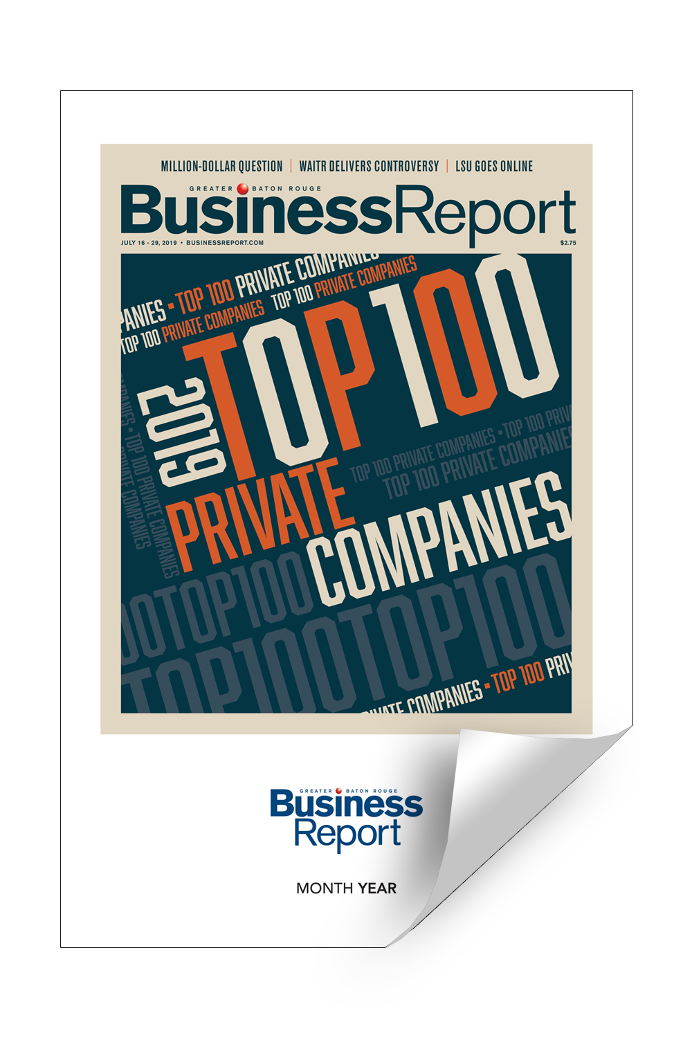 Business Report Cover / Article Reprints