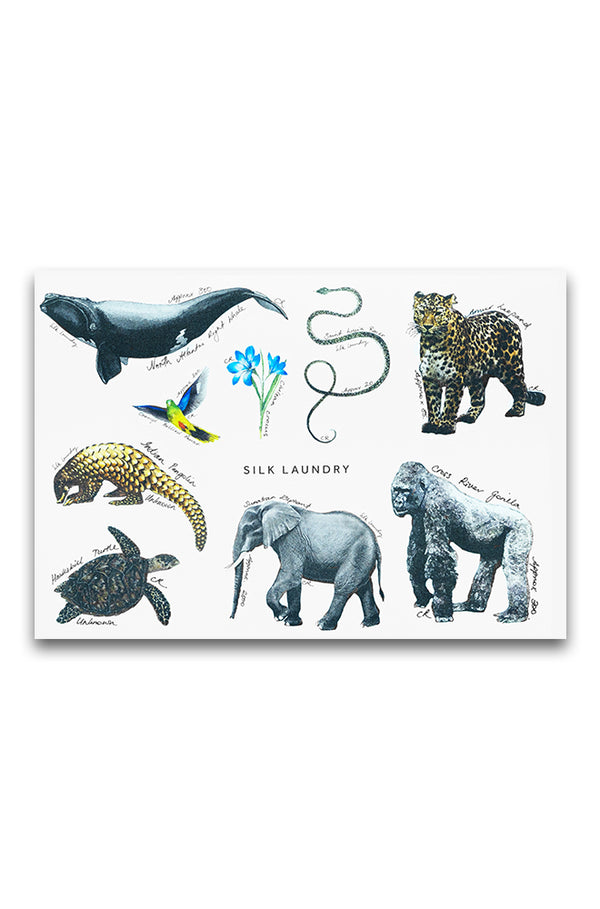 ENDANGERED SPECIES STICKER SHEET