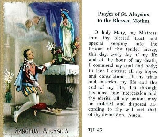 Prayer Card of Saint Aloysius To the Blessed Mother Laminated TJP 43