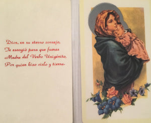 Prayer Card Dios En Su Eterno Consejo SPANISH Laminated NC