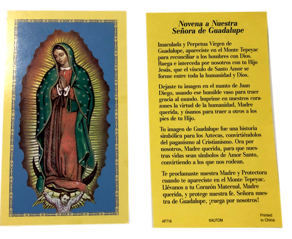 Prayer Card Novena A Nuestra Senora De Guadalupe SPANISH No Laminated AF719
