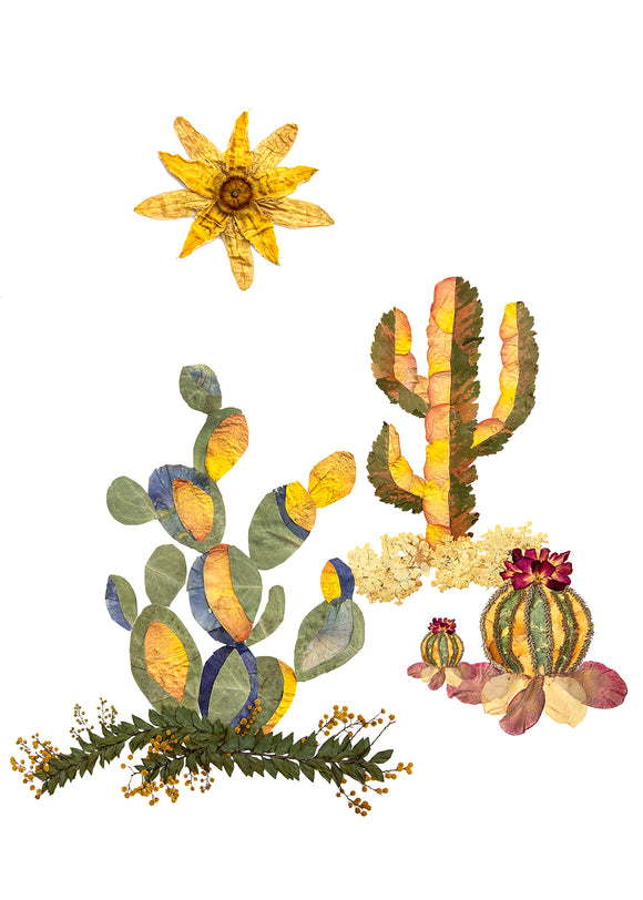 Cactus Garden Greeting Cards