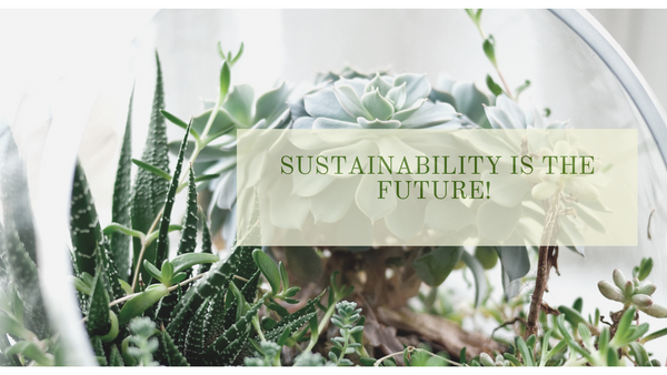 What Does Sustainable Really Mean?