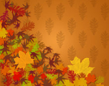 Load image into Gallery viewer, Fall Leaves