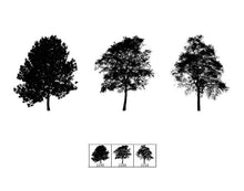 Load image into Gallery viewer, Trees