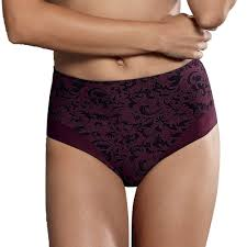 Anita Ancona High Waist Brief - Wine 1561