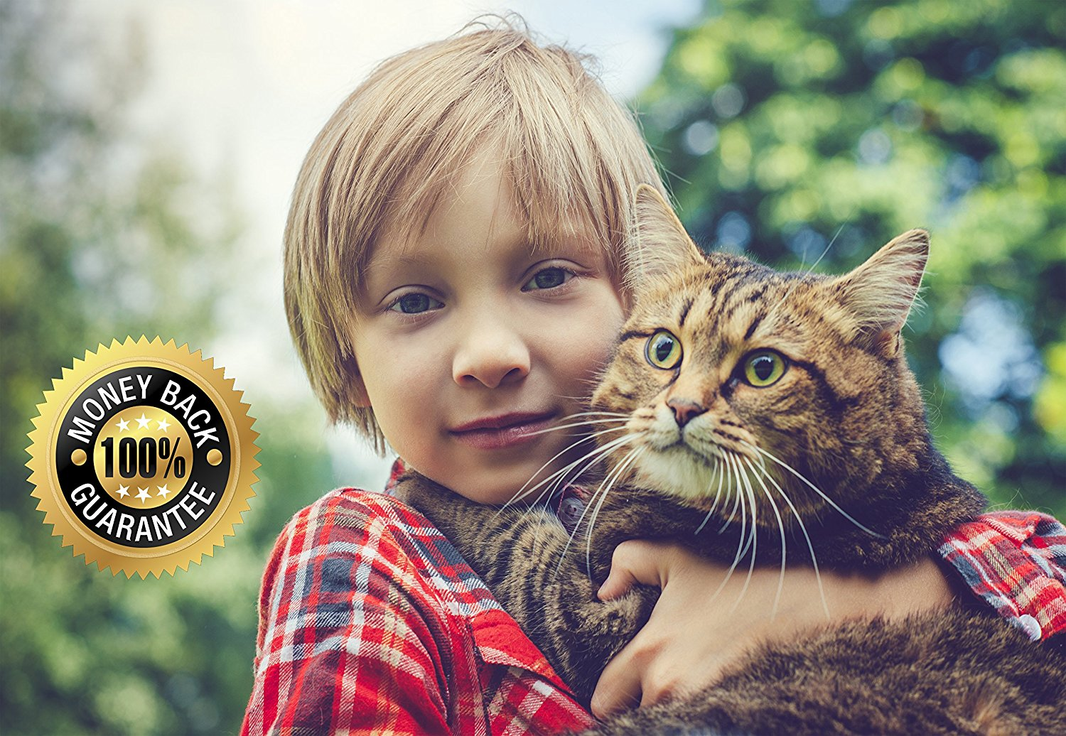All Natural Flea And Tick Collar For Cats-SMARTEST DEALZ