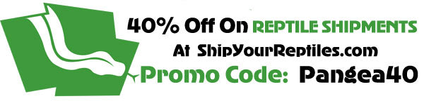 Reptile Shipping 40% Off