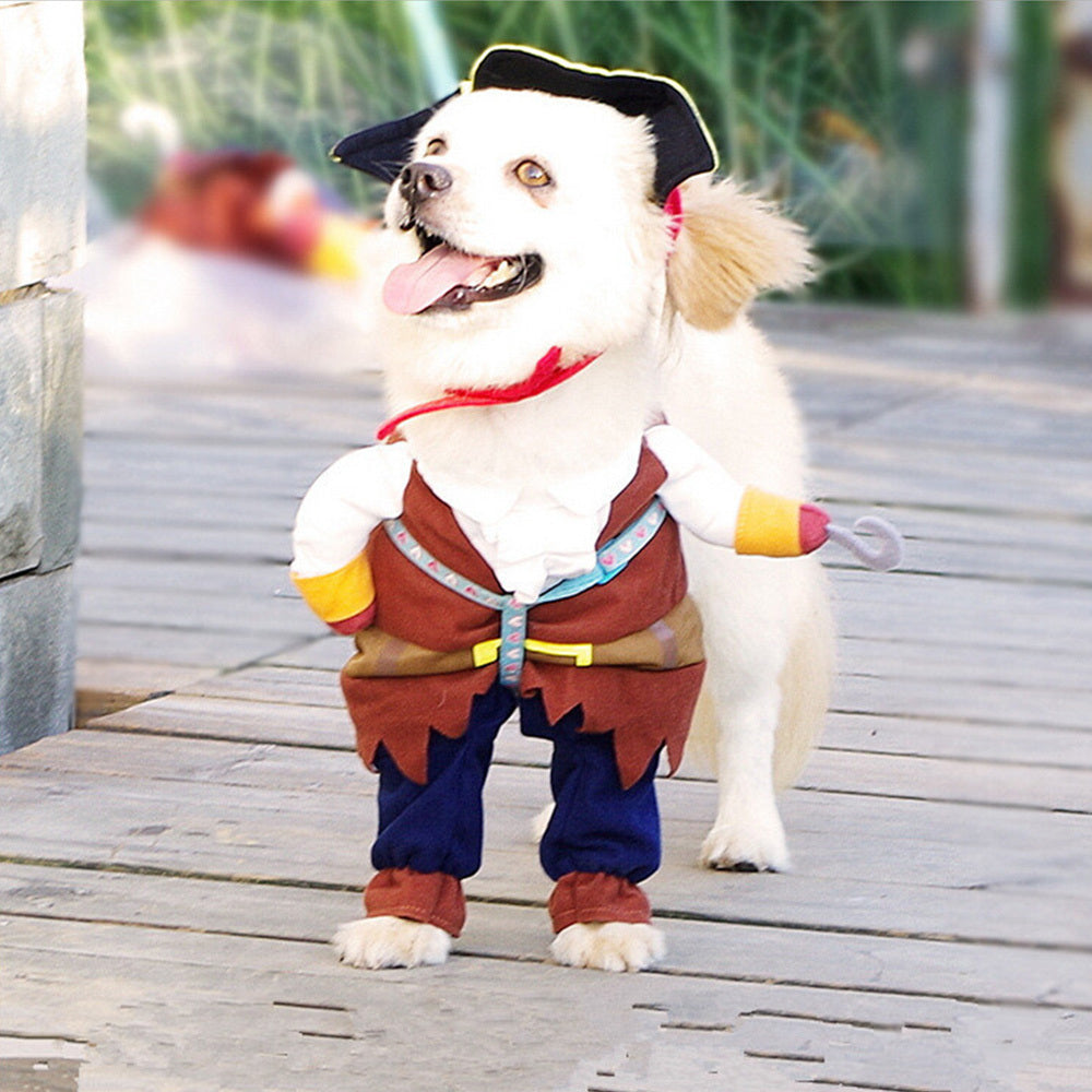 Dog Turned Pirate Clothes - Aanvi's Store