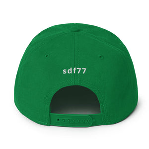 sdf77 Recycle LOVE Snapback Hat